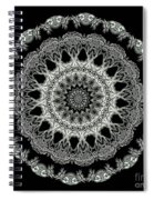 Kaleidoscope Ernst Haeckl Sea Life Series Black And White Set 2 Spiral Notebook