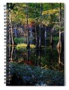 Kaleidoscope Light Spiral Notebook