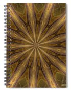 Kaleidoscope With Gold Spiral Notebook