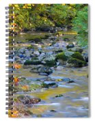 Kanaka Creek In The Fall Spiral Notebook