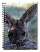 Kangaroo-4 Spiral Notebook