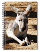 Kangaroo Spiral Notebook