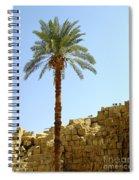 Karnak Temple 12 Spiral Notebook