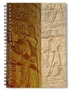 Karnak Temple Detail Spiral Notebook