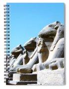 Karnak Temple Statue 14 Spiral Notebook