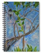 Kathy's Wall And Vine Spiral Notebook