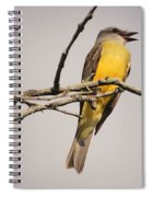 Kb Posing Spiral Notebook