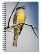 Kb Wondering Spiral Notebook