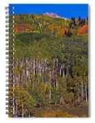 Kebler Pass Panorama Spiral Notebook