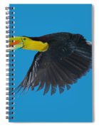 Keel-billed Toucan Spiral Notebook