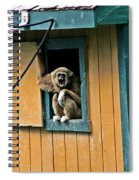 Keep It Down Out There Spiral Notebook