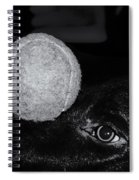 Keep Your Eye On The Ball Spiral Notebook