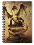 Keeper Of Wisdom Spiral Notebook