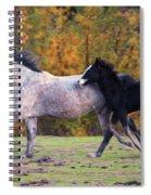 Keeping Up Spiral Notebook