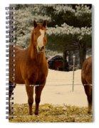 Keeping Warn Spiral Notebook