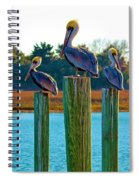 Keeping Watch Spiral Notebook