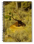 Keeping Watch Of His Herd Spiral Notebook