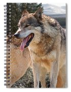 Keeping Watch - Pair Of Wolves Spiral Notebook