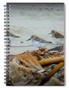 Kelp Standing Visitors Spiral Notebook