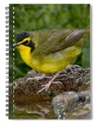 Kentucky Warbler Spiral Notebook