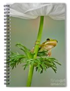 Kermits Canopy Spiral Notebook