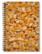 Kernels Galore Spiral Notebook