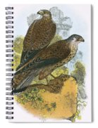 Kestrel Spiral Notebook
