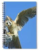 Kestrel With Lizard Spiral Notebook