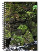 Ketchikan Riverbank Spiral Notebook