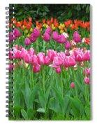 Keukenhof Gardens 14 Spiral Notebook