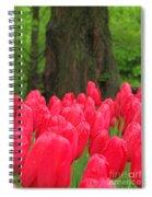 Keukenhof Gardens 19 Spiral Notebook