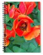 Keukenhof Gardens 2 Spiral Notebook