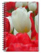 Keukenhof Gardens 21 Spiral Notebook
