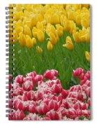 Keukenhof Gardens 37 Spiral Notebook