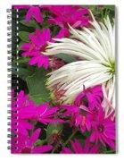 Keukenhof Gardens 38 Spiral Notebook
