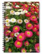 Keukenhof Gardens 39 Spiral Notebook