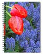 Keukenhof Gardens 4 Spiral Notebook