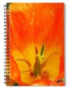 Keukenhof Gardens 42 Spiral Notebook