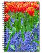 Keukenhof Gardens 6 Spiral Notebook