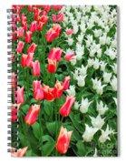Keukenhof Gardens 7 Spiral Notebook