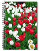 Keukenhof Gardens Panoramic 20 Spiral Notebook