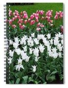 Keukenhof Gardens Panoramic 9 Spiral Notebook