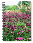 KEW Spiral Notebook