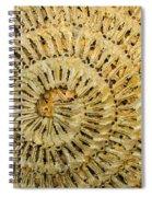 Key Ring Spiral Notebook
