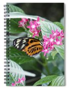 Key West Butterfly Conservatory - Monarch Danaus Plexippus 2 Spiral Notebook