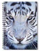 Khan The White Bengal Tiger Spiral Notebook