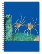 Kick Up Your Heels Spiral Notebook