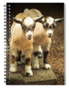 Kids One And Two Spiral Notebook