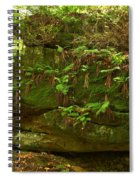 Kildoo Trail Stoned Turtle Spiral Notebook