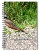 Killdeer Spiral Notebook